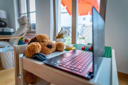 Homeoffice_Teddy