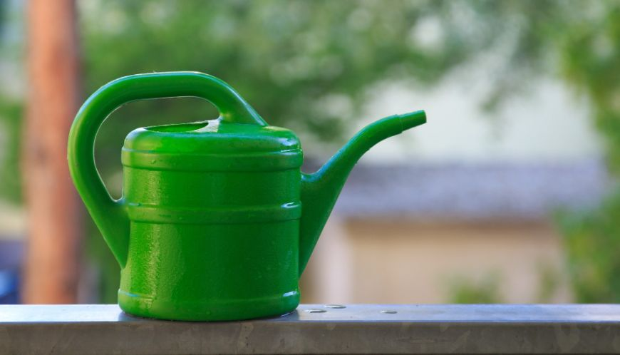 watering-can-1379721_1920